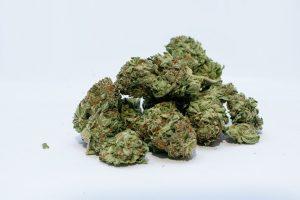 Vente du cannabis en ligne: la SAQ retient une entreprise québécoise
