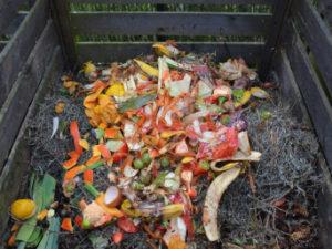 Un projet-pilote auprès des ICI pour la collecte du compost